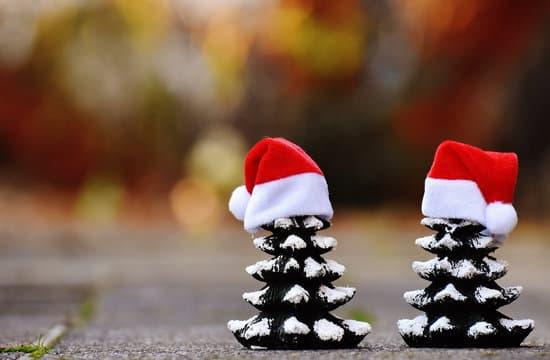 Buon Natale a tutti gli amici di Urban Budo!